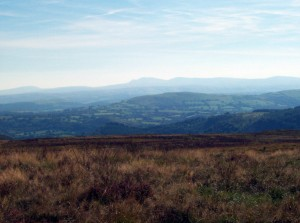 Towards the Beacons