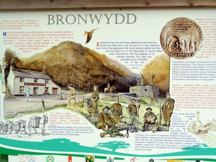 Bronwtdd 009