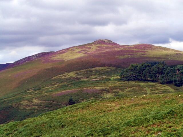 Elan valley 022